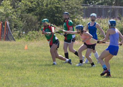 gaels-camogie-03
