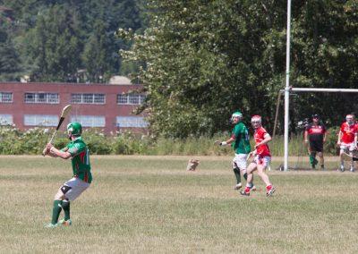 gaels-hurling-04